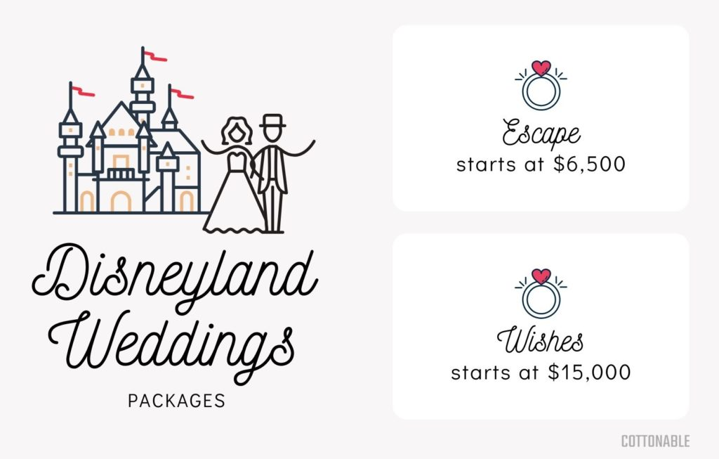 Disneyland Wedding packages and price