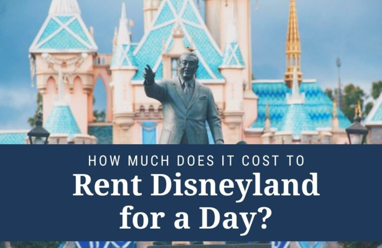 Cover image for Renting Disneyland for a Day