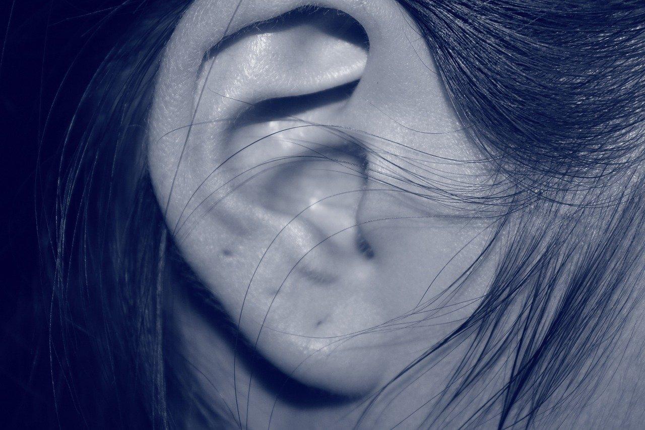 ears with 3 piercings